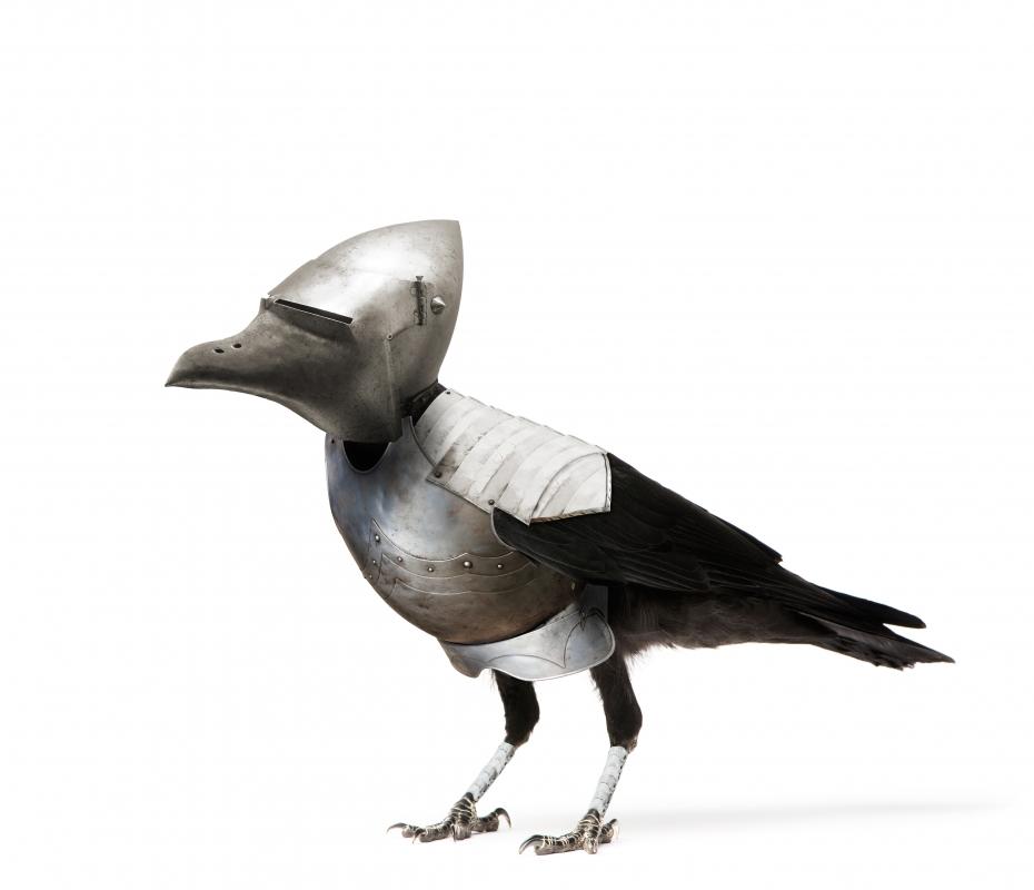 "Pratchett's ""Armored Raven"""