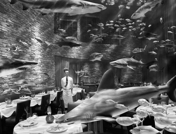 Swimming With Sharks, Geof Kern