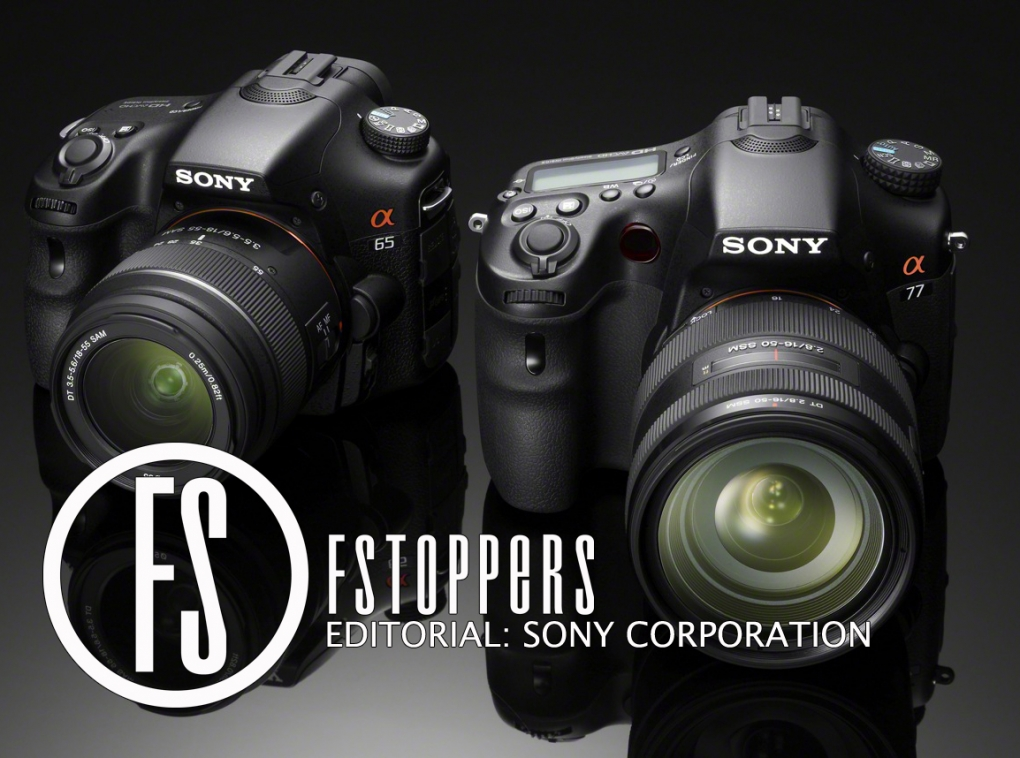 [Editorial] Can Sony's Digital Imaging Division Restore Profits?