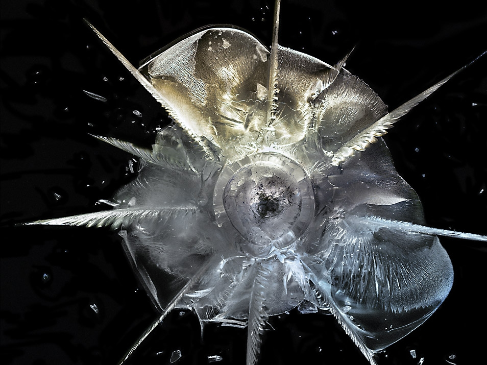 [Pics] Striking Macro Shots of Bullet Impacts
