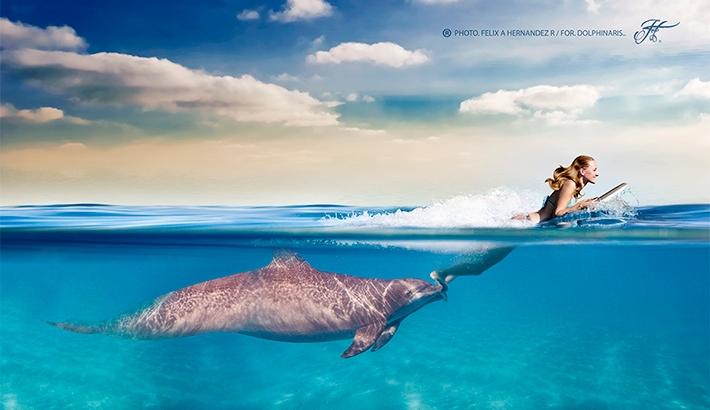 Amazing Underwater Imagery Breakdown: Magic Moments