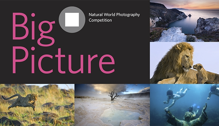 "Enter Your Wildlife Images in ""Big Picture: Natural World Photography Competition"""
