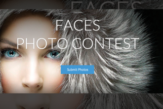 Want to Master Photoshop CC? Enter to Win an Instructional Book!