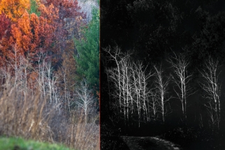 The Top Five Nik Color Efex Pro Filters For Superb Landscape Photos