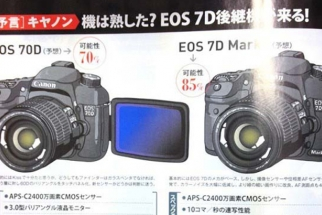 New Canon Camera Body Rumors for 2013