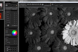 Sigma Introduces Photo Pro 5.5 Software, Focus on Monochrome