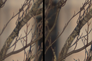 Conceptual Software Produces Amazing Detail From Bad Lenses