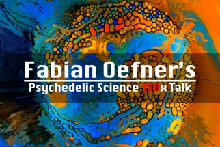 "Fabian Oefner's ""Psychedelic Science"" TED Talk"