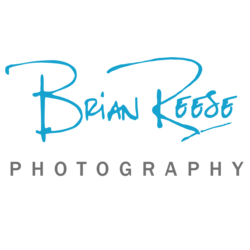 Brian Reese's picture