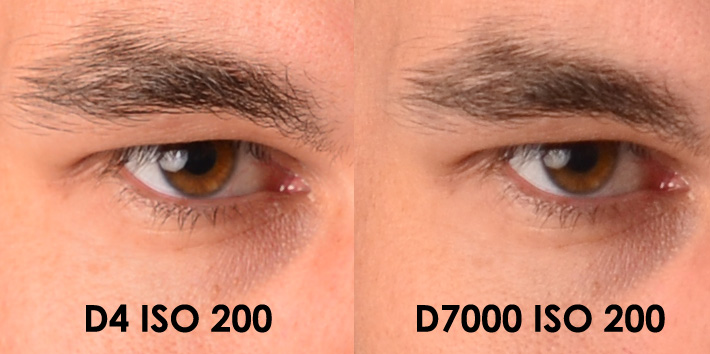 The Nikon D4 Vs D3s D3 And D7000 D3s Wins Updated