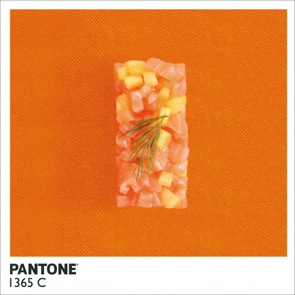 pantone-site5