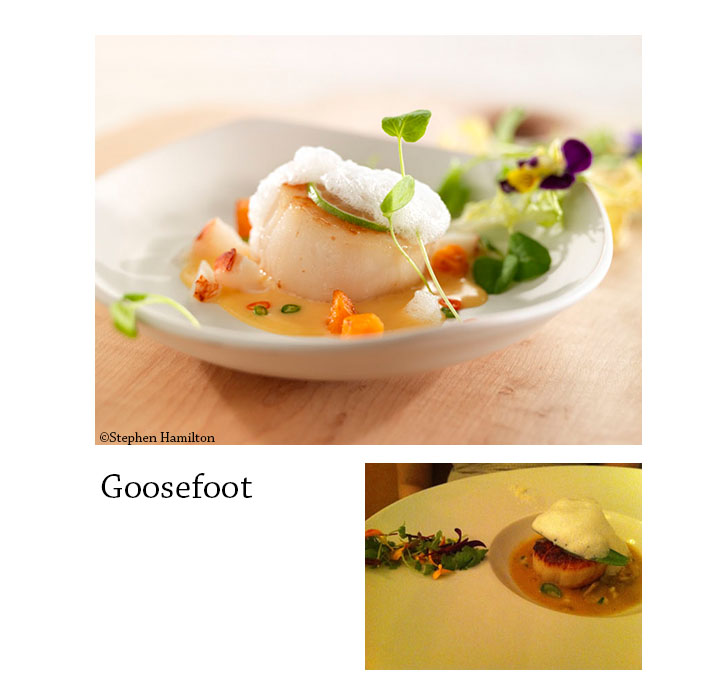 Goosefoot_composed