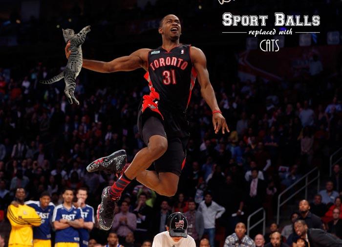 sportsballs06