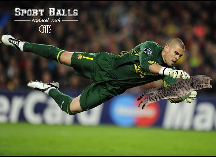 sportsballs09