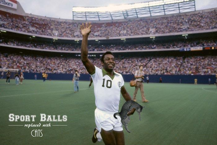 sportsballs12