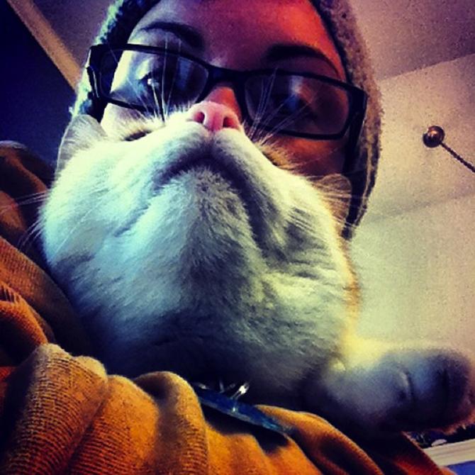 catbeards2