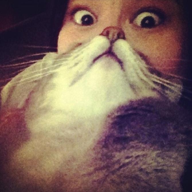 catbeards4
