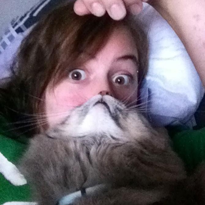 catbeards5