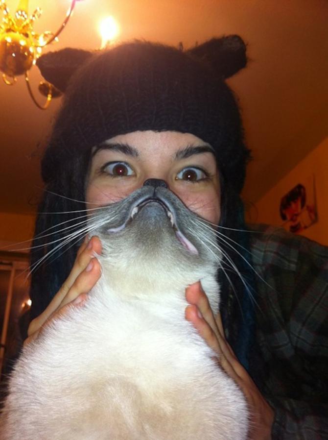 catbeards8