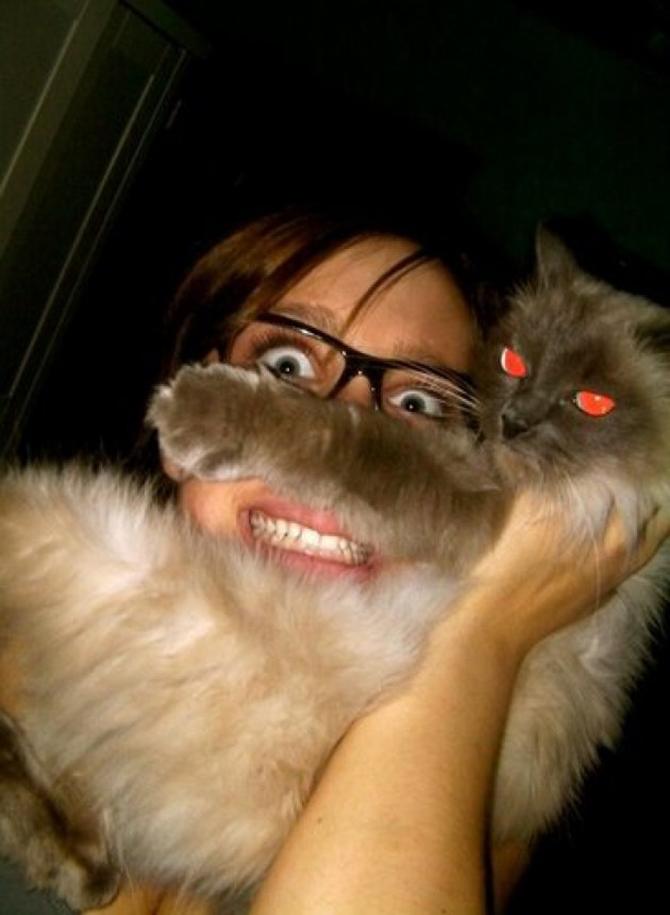 catbeards9