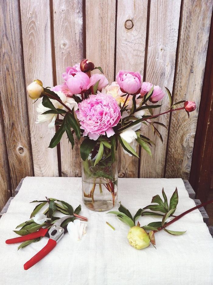 s1_vscocam_nicolefranzen_pinkflowerstrimmed