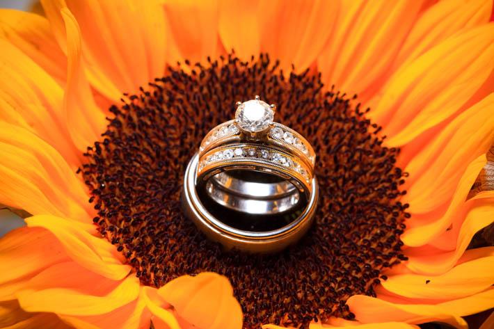 Ring Shots 1 Light-2