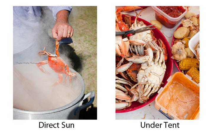 crabs_LSU