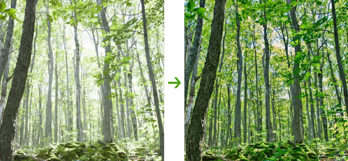 fstoppers-before-after-hdr-luminance-mask