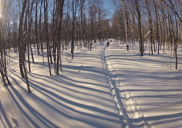 fstoppers-mike-wilkinson-snowy-trail