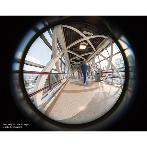 lensbaby fisheye photo by chris link