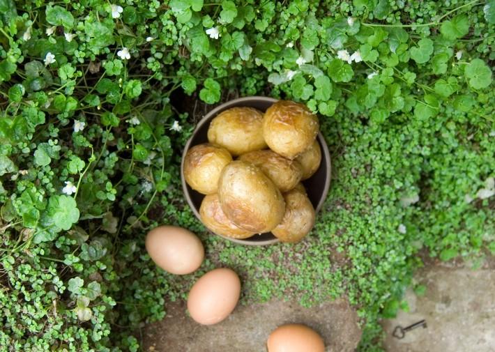 Fictitious_Dishes_Secret-Garden
