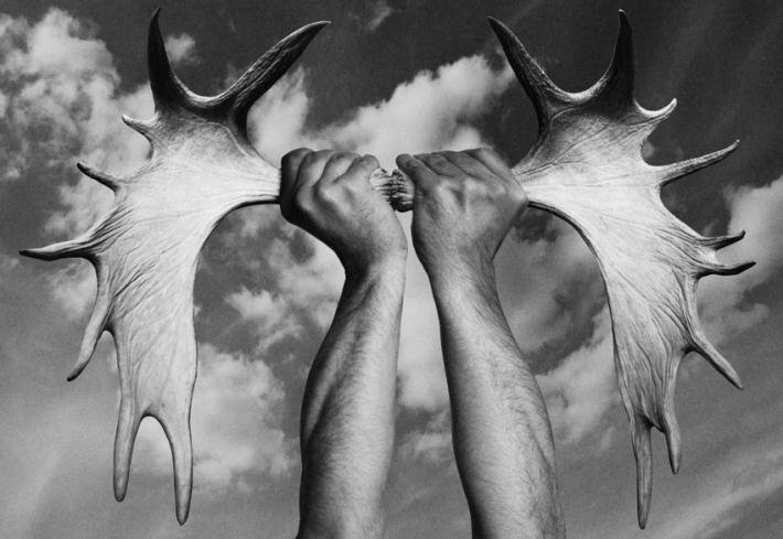 Gonzalo-Benard-Totem-Antlers