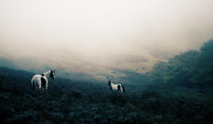 Finn-Beales-Postcards-Wales-11